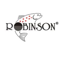 ROBINSON – Analiza spolki