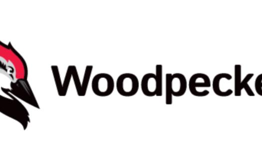 Woodpecker – Analiza ciekawej spółki SaaS po IPO